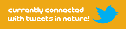 Currently Connected With Tweets in Nature-Slogan